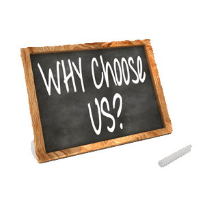 Why Choose Us transparent300px